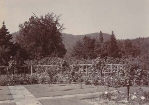 Ornamental Gardens Early 1900s_