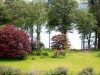 Lake-View-13